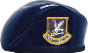 Air Force Security Forces Dark Blue Ceramic Beret